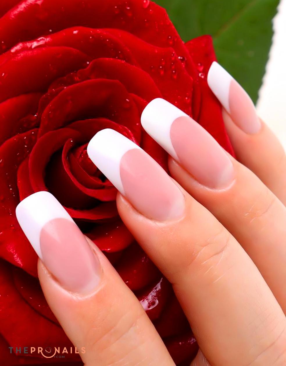 XO Nails & Spa | UV Gel Powder Pink & White Full Set